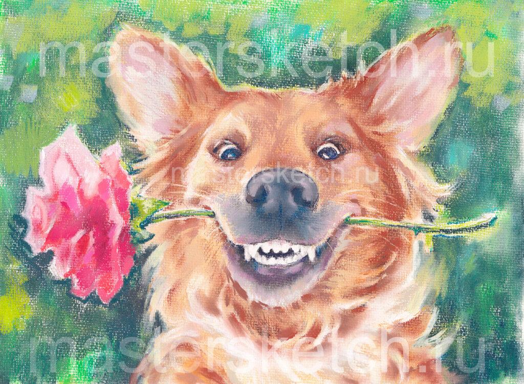 Портрет собаки, шарж на собаку